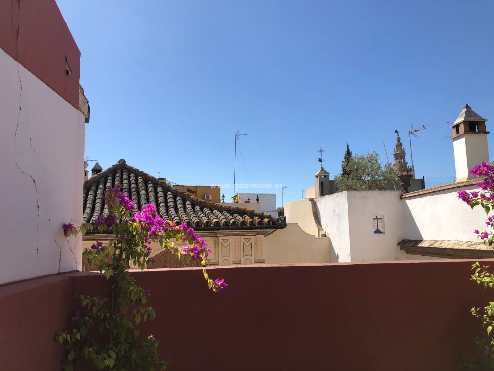 Atico en Casco Histórico de Sevilla