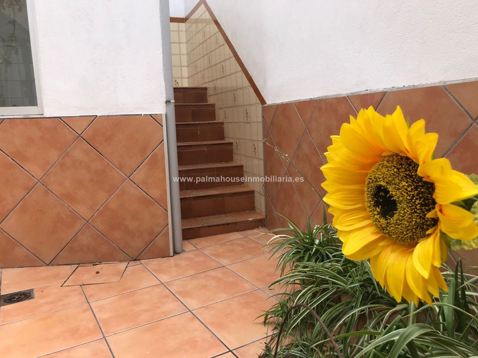 CASA. PALMA DE MALLORCA , area COLL DEN RABASSA