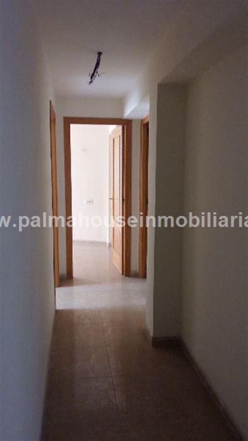 ÁTICO en PALMA DE MALLORCA, zona PZA. TOROS. Foto