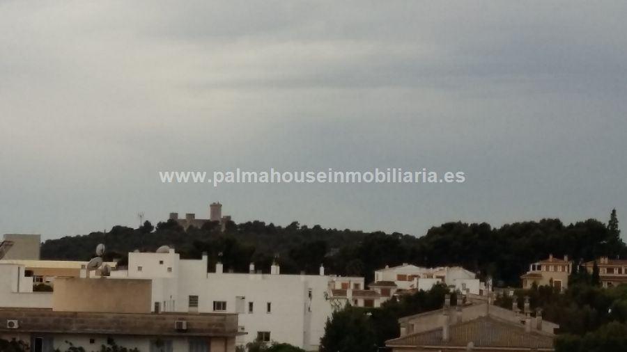 PISO en PALMA DE MALLORCA, zona SON DAMETO. Foto