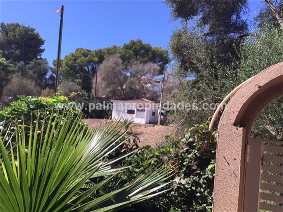 PLANTA BAJA en LLUCMAJOR, zona SON VERI. Foto