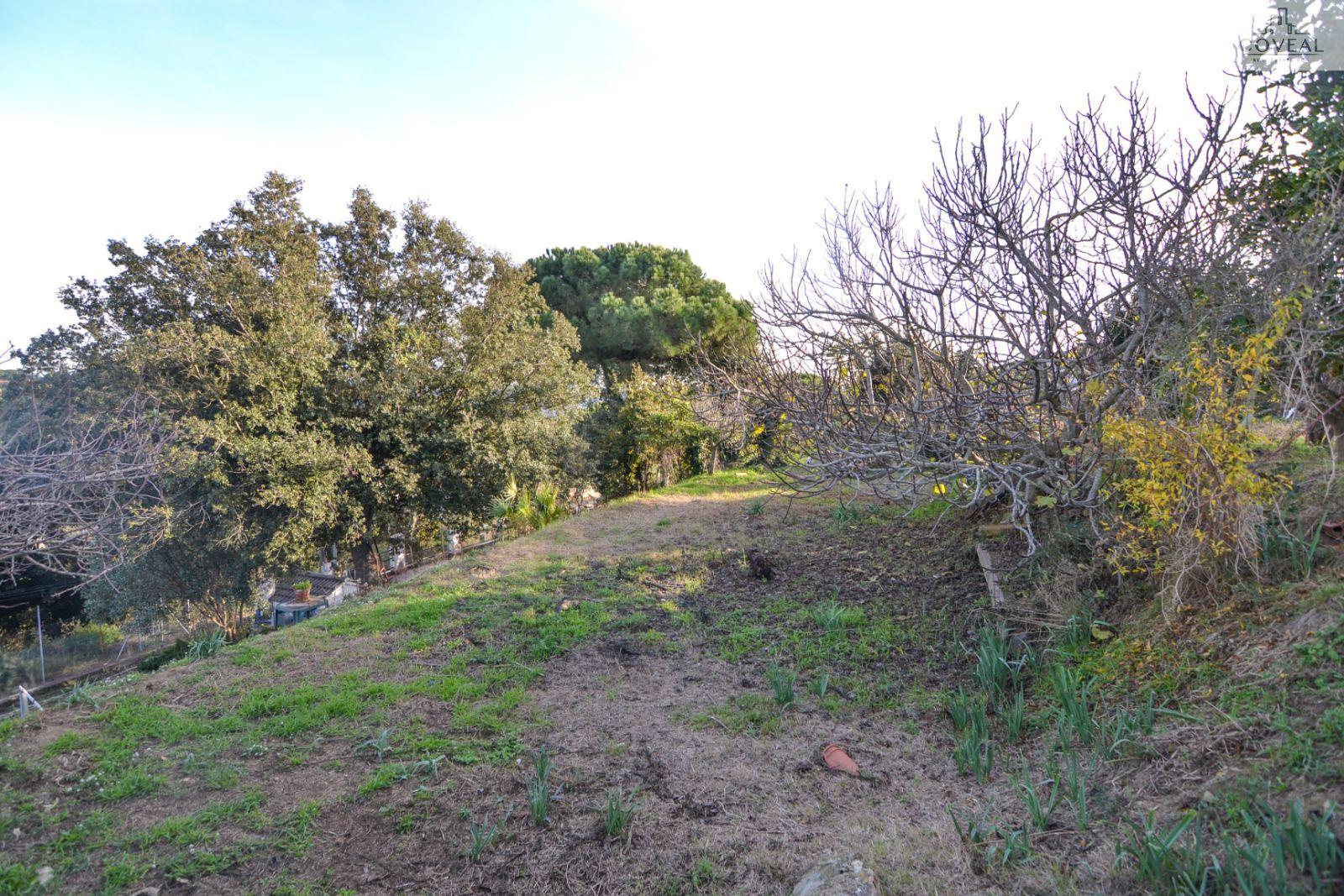 Gran terreno con vistas despejadas.