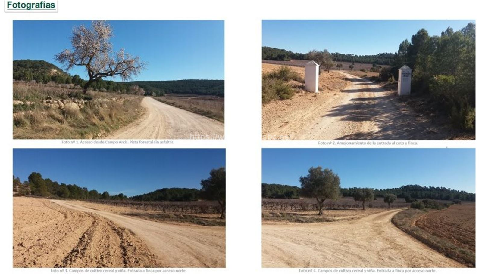 LAND in REQUENA