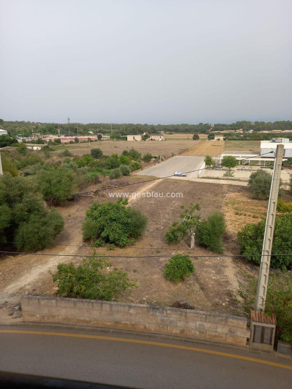 SINEU , Duplex con vistas despejadas