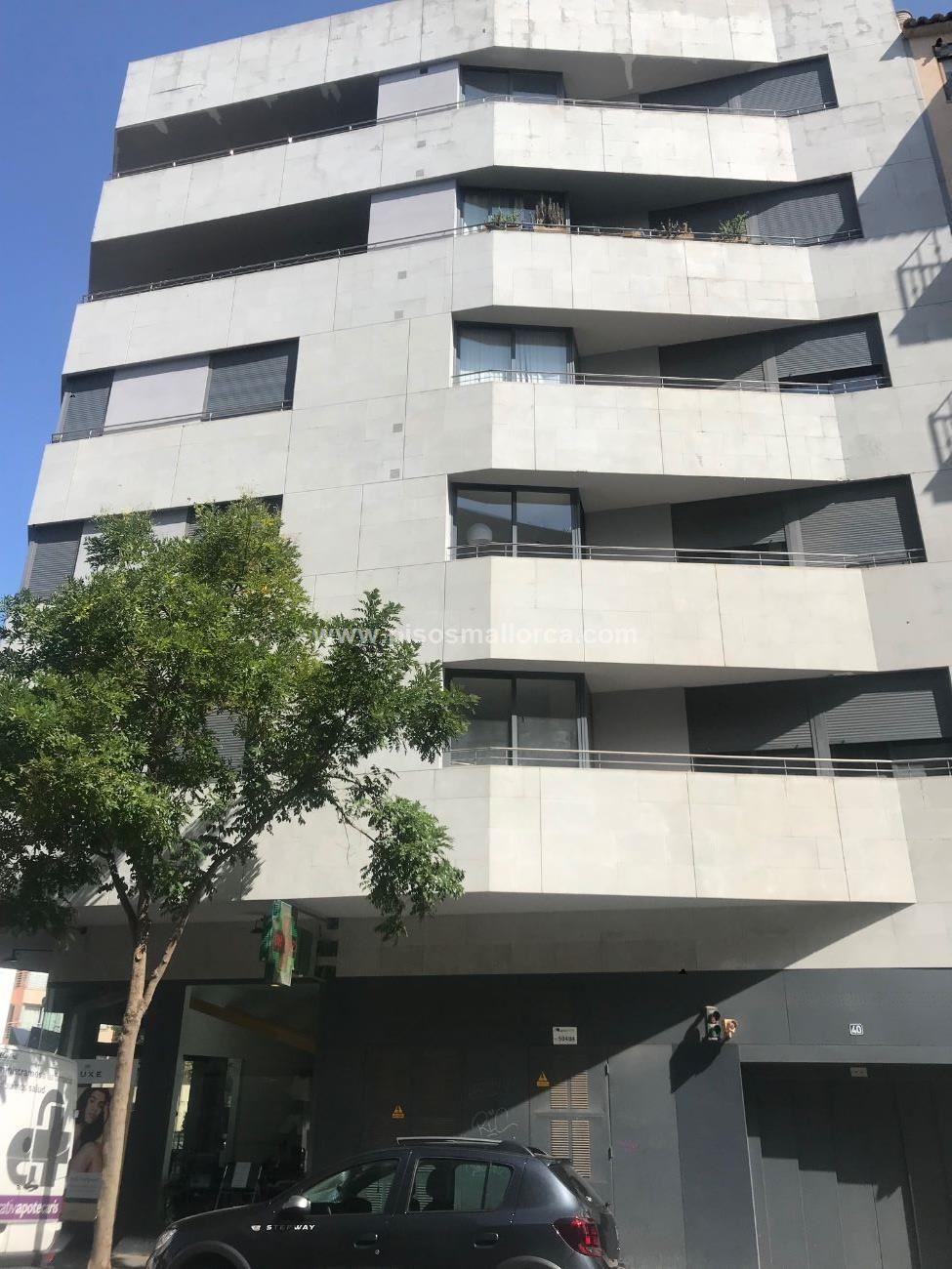 PISO. PALMA DE MALLORCA , area JACINTO VERDAGUER