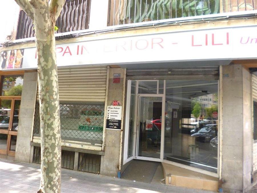 LOCAL en PALMA DE MALLORCA